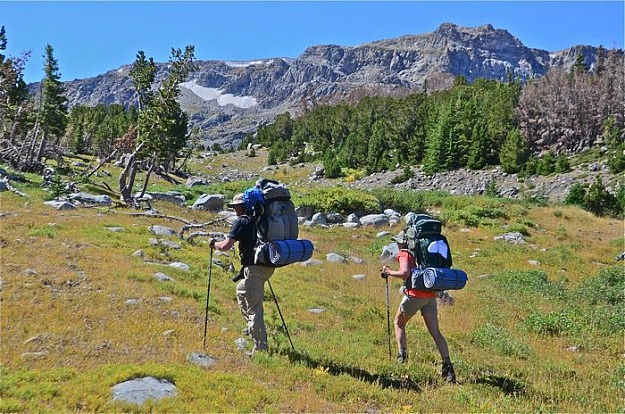 Tree-Line Backpackers