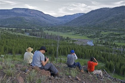 Wildlife Watchers on Guided Yellowstone Backpacking Trip
