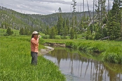 yellowstone-hikingtours