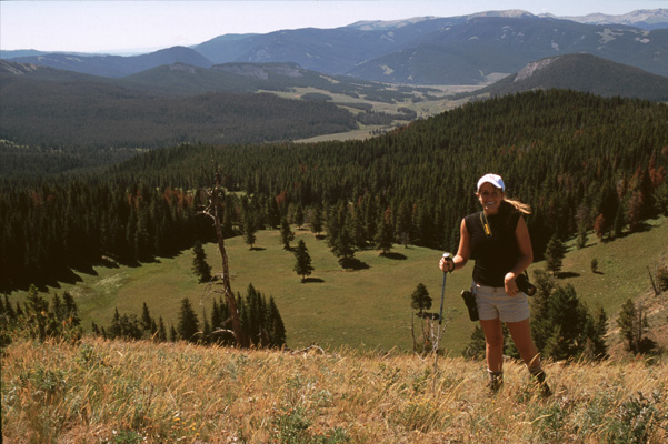 Yellowstone Backpacking - Gallatin Mountains | Travel with REI