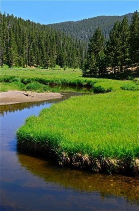 Broad Creek, in Yellowstone National Park