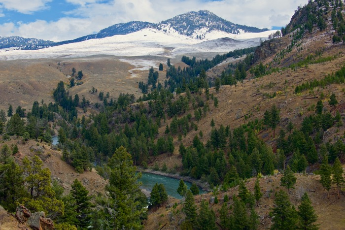 Guided Yellowstone Hikes